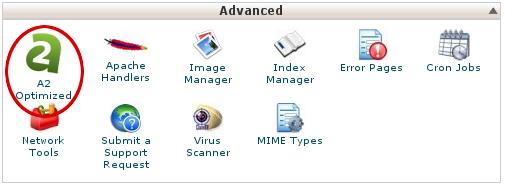 cPanel - A2 Optimized icon